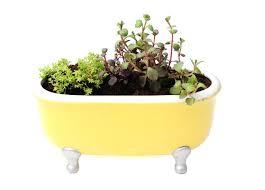Bathtub Planter Best Ways To Garden In Small Spaces Gardener U0027s Path