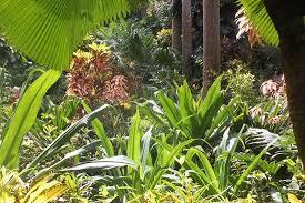 garden scenery picture of hunte u0027s gardens saint joseph parish