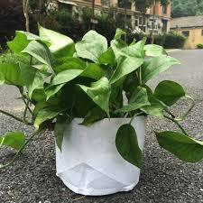 popular 5 gallon plant pots buy cheap 5 gallon plant pots lots