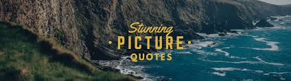 quotes visual learning 100 stunning picture quotes that will supercharge your creativity