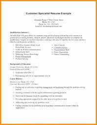 summary in a resume exle of resume summary best of exles resume summary