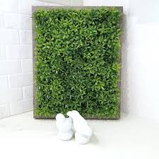 wall ideas find this pin and more on green wall art that grow by