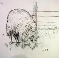sketching sheep sticks stones and paper stew blog