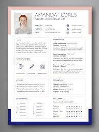 Temple Resume Template 504 Best Branding Images On Pinterest Resume Cv Resume