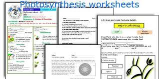 english teaching worksheets photosynthesis