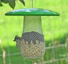 amazon com the best wild bird feeder to attract more wild birds