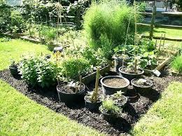 Garden Landscaping Ideas For Small Gardens Plants Landscaping Ideas Yard Plants Garden Landscaping Ideas