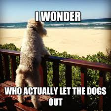 Who Let The Dogs Out Meme - livememe com philosophical dog