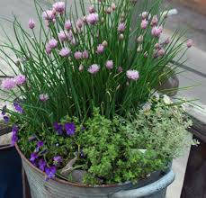 Herb Container Gardening Ideas The Easiest 10 Vegetables And Herbs To Grow In Containers Pots
