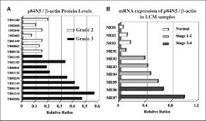 linking transcriptional elongation and messenger rna export to
