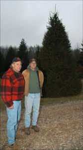 christmas tree farms near columbus ohio