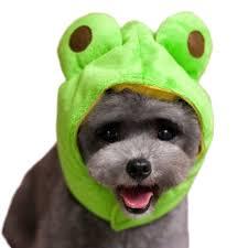 halloween hats cat hat dog cap halloween pet party costumes dog hats