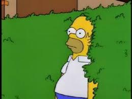 Simpson Memes - juego de los simpson meme gamedots