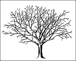bare tree coloring pages color zini