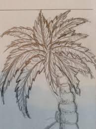how to draw a palm tree 6 steps