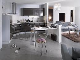 amenagement salon cuisine separation cuisine americaine et galerie avec aménagement cuisine