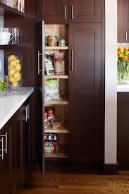 kitchen cabinet pantry the pros and cons of walk in vs cabinet pantries