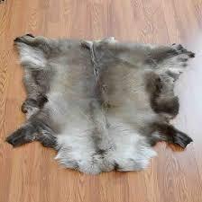 Reindeer Hide Rug Animal Skin Rugs For Sale At Safariworks Taxidermy Sales Animal Decor