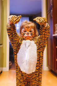 best 25 tiger halloween costume ideas on pinterest tigger