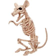 Halloween Posable Skeleton Crazybonez Skeleton Rat Halloween Decoration Walmart Com