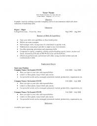 attorney resume example legal brief template word agenda meeting template word executive 13 amazing law resume examples livecareer legal templates word