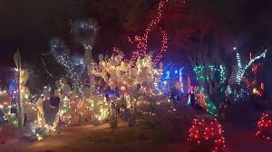 ethel m chocolate factory las vegas holiday lights lights on cactus and trees in the garden picture of ethel m