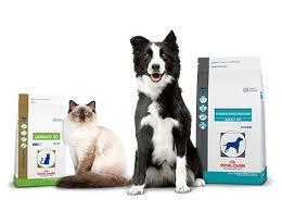 prescription cat u0026 dog food veterinary diets royal canin