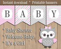 owl baby girl shower decorations owl baby shower etsy