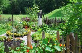 Home Vegetable Gardens by Outdoor And Patio Cute Small Backyard Vegetable Garden Ideas