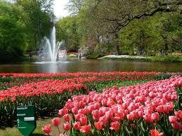 best flowers garden in the world u2013 thin blog
