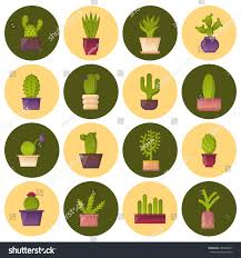 Home Interior Mexico by Vector Illustration Cartoon Isolated Cactus Icon Stock Vector