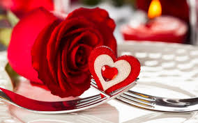 wallpaper flower red rose flower red heart wallpaper