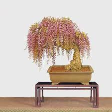Indoor Decorative Trees For The Home Indoor Decorative Trees For The Home Best China Cheap Outdoor