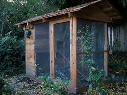 Backyard Chicken Houses by Chicken Coop In Backyard 5 Chicken House Plans Backyard Chicken