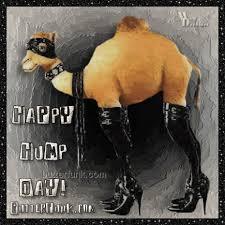 Hump Day Camel Meme - nice camel meme camel hump day wednesday quotes quotesgram kayak