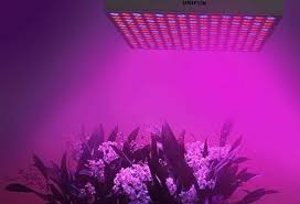 Best Led Grow Lights Top 10 Best Led Grow Lights Reviews In 2017 Toppro10