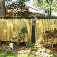 Privacy Backyard Ideas by Best 25 Bamboo Fencing Ideas Ideas Only On Pinterest Bamboo