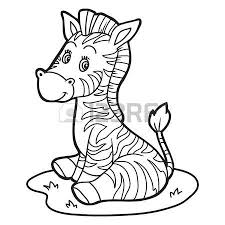 1 127 young zebra stock vector illustration royalty free young