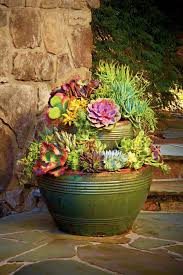 740 best try to contain yourself container gardens ideas images