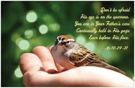 his eye is on the sparrow touching the king