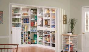 Build Your Own Pantry Cabinet Kitchen Cabinet Pantries Vs Walk In Pantries Designwud
