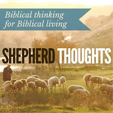 trusting in god a bible study for children shepherd thoughts