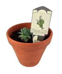 Indoor Herb Garden Kits Provisions Indoor Gardening Kit Subconscious Realms The Art