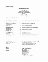 resume cv format resume format exles inspirational resume cv format exle