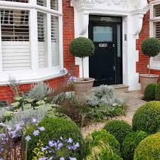 putney flowering front garden patio pinterest front gardens