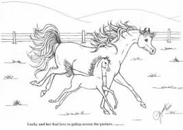 breyer coloring pages paint horse and trailer breyer coloring pages s