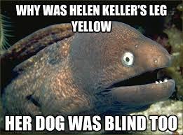 Dog Jokes Meme - why was helen keller s leg yellow her dog was blind too bad joke