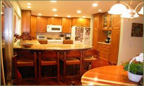 Hickory Kitchen Cabinet Hickory Kitchen Cabinets Kitchen 14 The Best Kitchen Cabinets