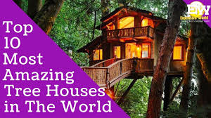 10 Most Amazing Tree Houses in The World  Top 10 Interesting Facts