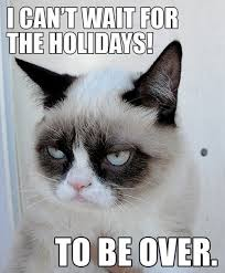 Unhappy Meme - internet sensation grumpy cat known for her unhappy off expression
